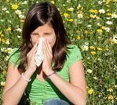 alergii-buruieni