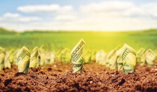 Fonduri europene pentru agricultură