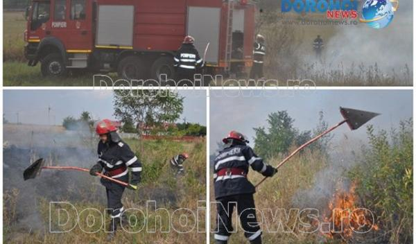 Incendiu Dealu Mare_01