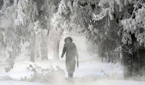 ger iarna