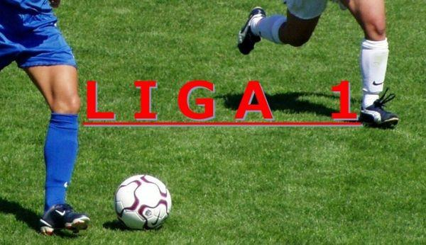 liga1 FC Botoșani - ACS Poli Timișoara
