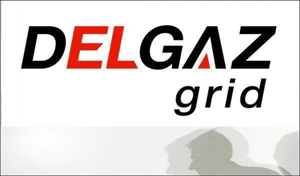 DELGAZ grid - Anunt intrerupere energie electrica. Vezi zonele vizate!