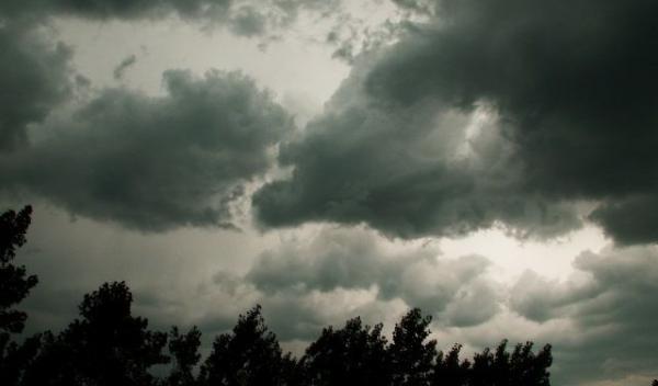 Furtuna_d