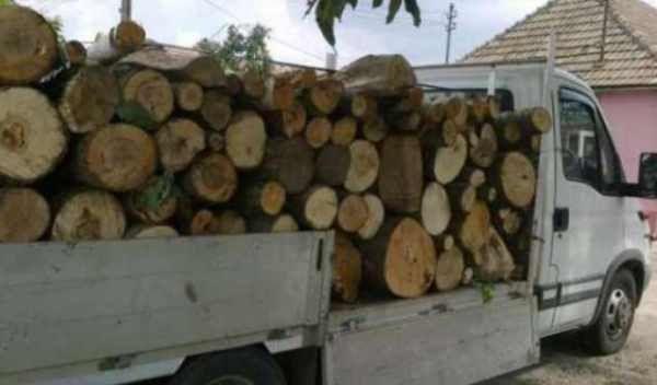 lemn-autoutilitara