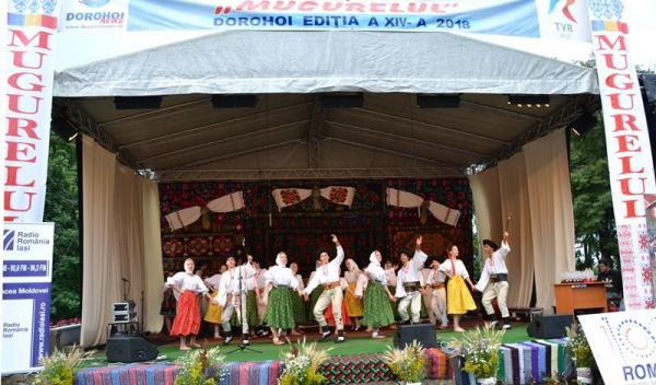 Festivalul Mugurelul_ansambluri
