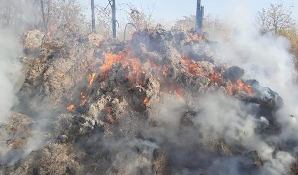 incendiu Bobulesti 07