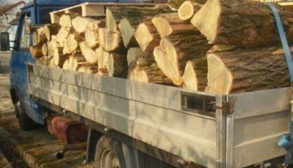 amenda lemne