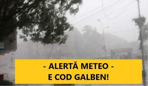 Cod Galben