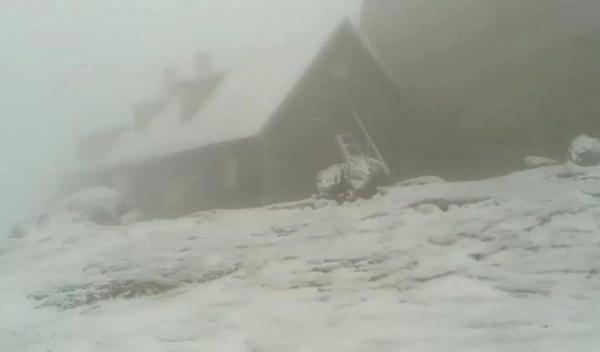 ninsoare-in-iulie-2019-2