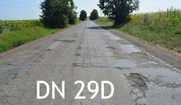 dn-29-D