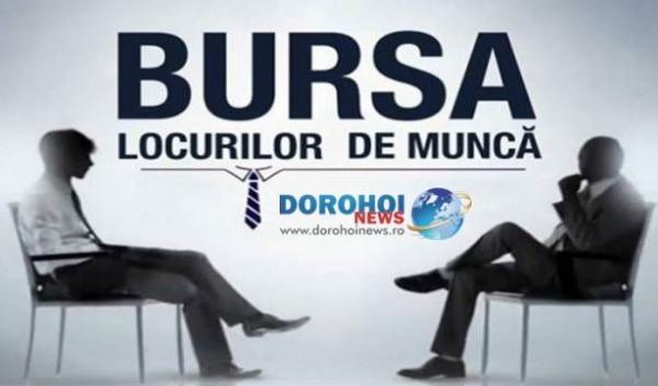 Bursa locurilor de munca (2)