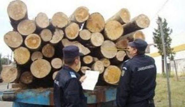 furt-lemne