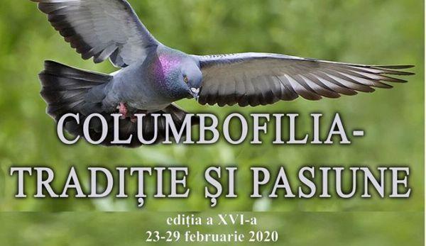 columbofilia
