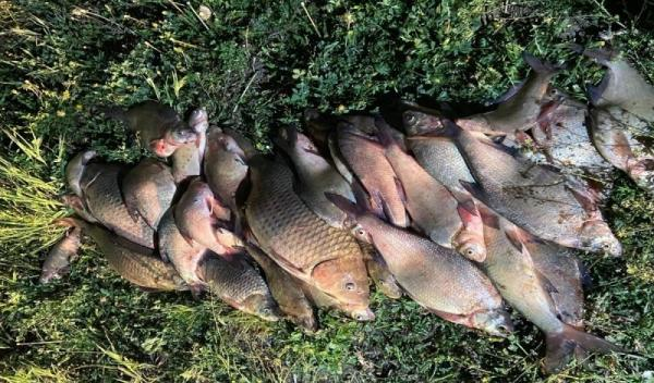 Pescari la vreme de seara