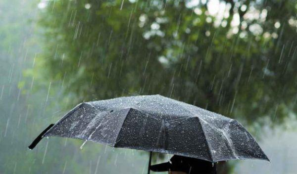 cod-galben-de-ploi