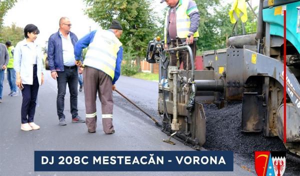 DJ 208C Mesteacan - Vorona   (2)