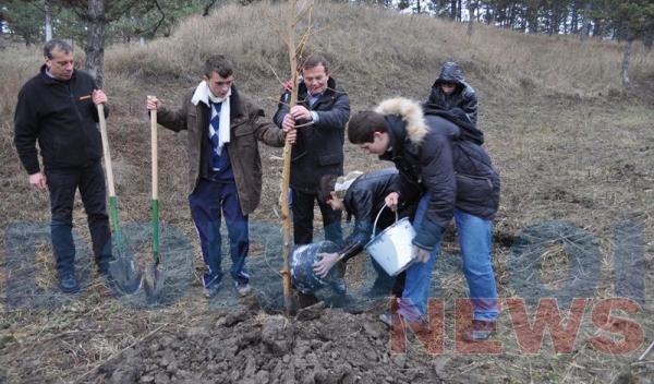 Actiune de plantare copaci_07