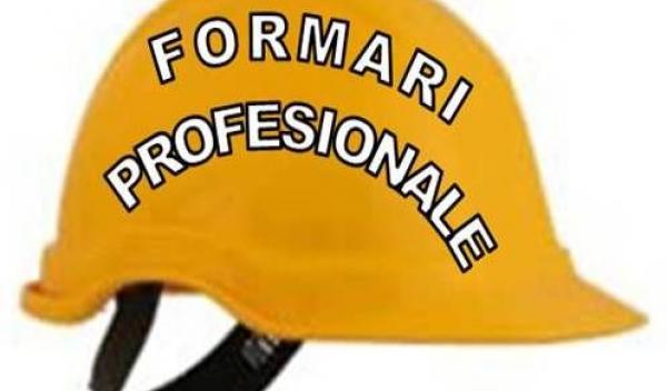 Formari profesionale