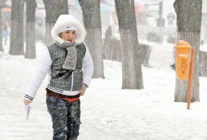 ger_iarna_frig