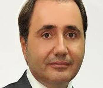 Cristian Rizea PSD diaspora