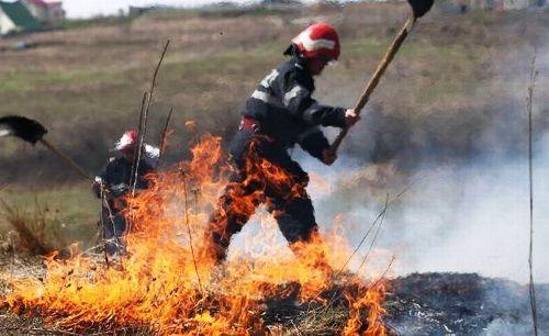 pompieri-incendiu-miristi