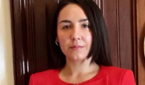 Claudia Tapardel - eurodeputat PSD