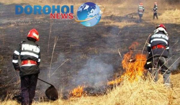 Incendiile de vegetatie uscata Dorohoi