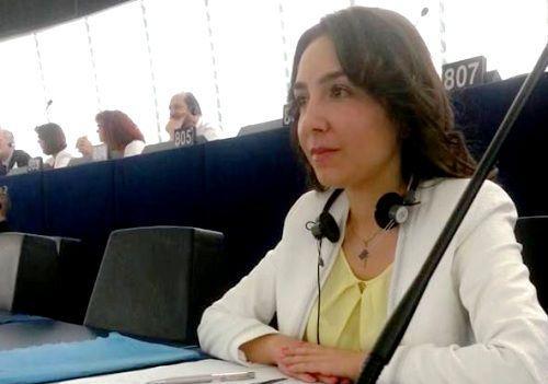 Claudia Tapardel - Parlamentul european